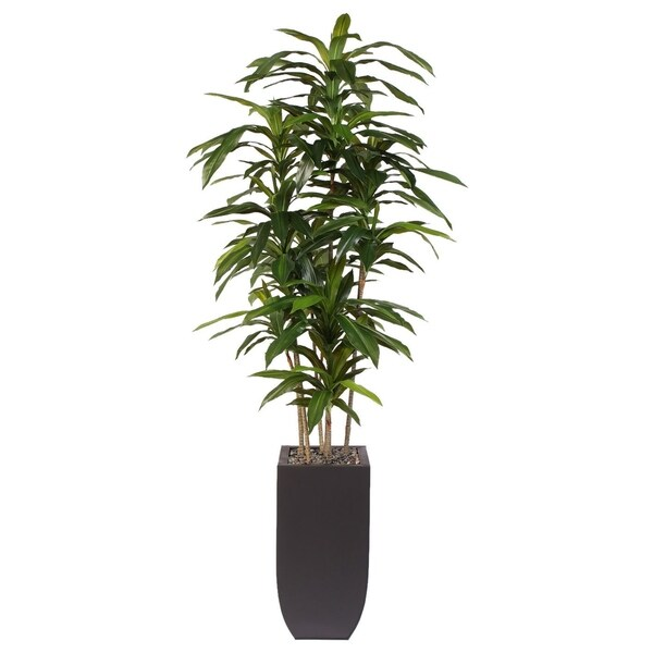Artificial Dracaena Massangeana Dark Brown Metal Potted Plant