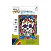 Paintworks Color By Number 9x12 Sugar Skull