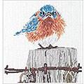 Набор для вышивания Растрепанная синичка, Bucilla 42733 купить в санкт...