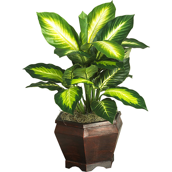 Silk Golden Dieffenbachia Plant With Wood Vase 11765309