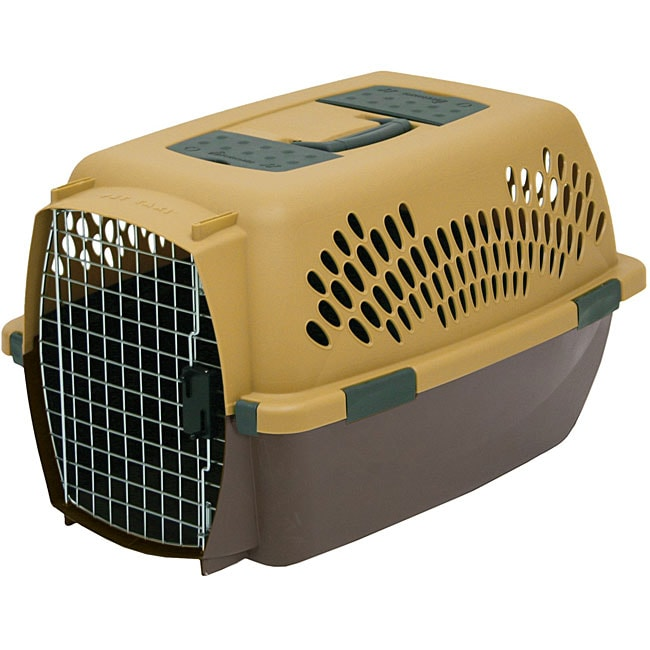 Petmate Pet Taxi Fashion Carrier 12307340 Overstock