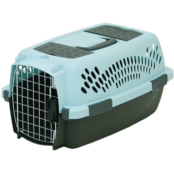 Petmate Small Pet Taxi Fashion Carrier 12307408