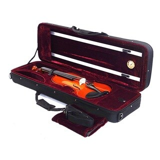 Classic Euro-design 4/4 Full Size Violin with Accessories