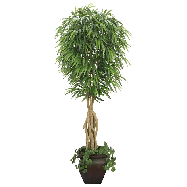 Laura Ashley 7-foot Artificial Willow Ficus Tree