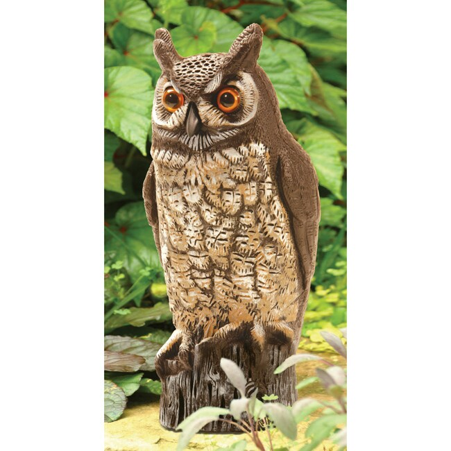 Dalen 16 Inch Molded Owl Painted 14014693 Overstock