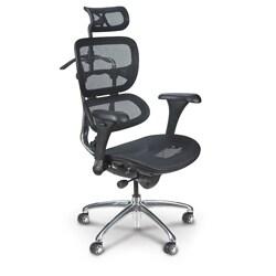Integrity Seating Ergonomic Mesh Height Adjustable Swivel