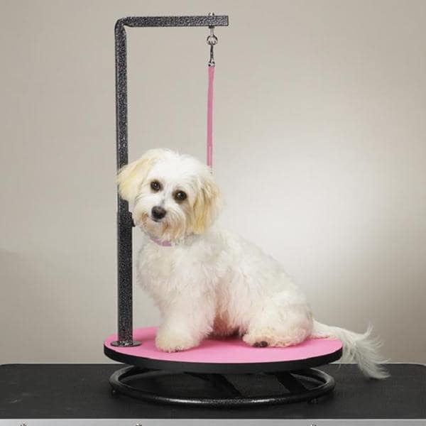 Master Equipment Small Pet Grooming Table Pink
