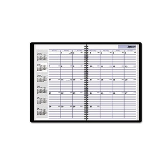 DayMinder 2012-2014 Recycled Monthly Academic Planner (7.875 x 11.875)