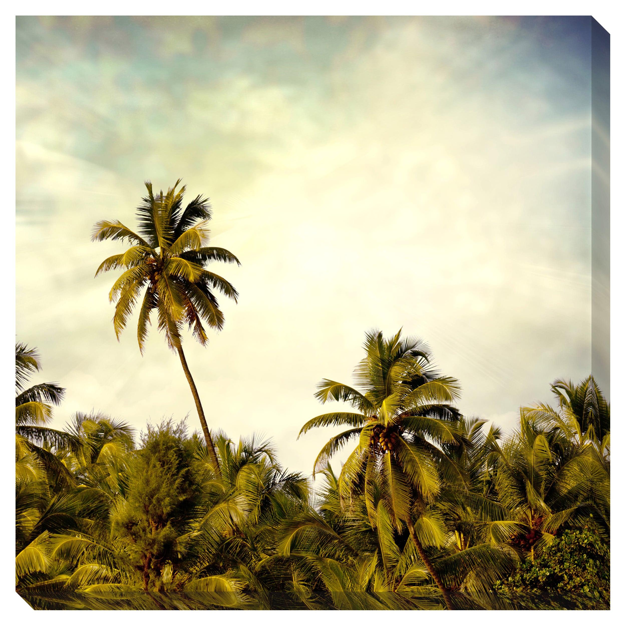 Vintage Palm 71