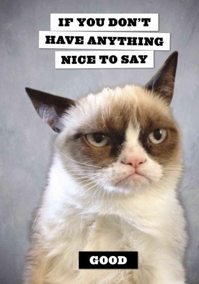 Grumpy Cat Flexi Journ...