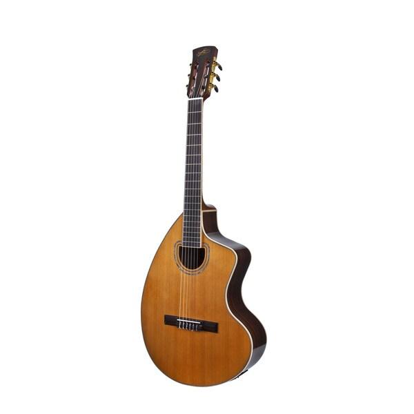 giannini craviola acoustic electric guitar custom hard case 15903632 shopping. Black Bedroom Furniture Sets. Home Design Ideas