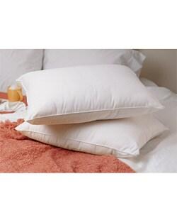 Down Pillows Shop The Best Brands Overstock Com