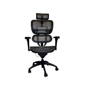 Ergonomic Chairs Overstock Com Shopping The Best