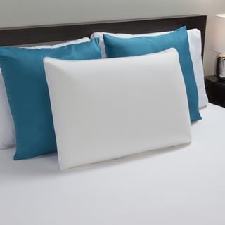 Bodipedic Antimicrobial Molded Memory Foam Pillow