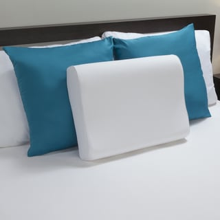 Sealy Memory Foam Contour Pillow 15387250 Overstock