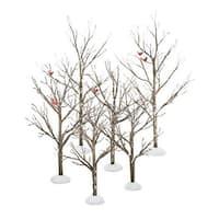 Village Bare Branch Trees