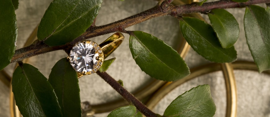 Circle diamond gold ring on a branch with green leaves.