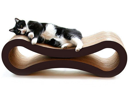 cat on pet furniture